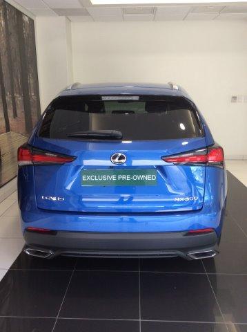 LEXUS NX 2.0T EX/300 EX Blue